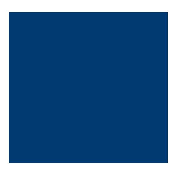 GrupoPinsa